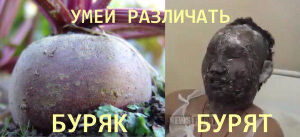 """Боевики """"ДНР"""" заявляют, что задержали полковника СБУ, а не сотрудника миссии ООН - Цензор.НЕТ 9151"""