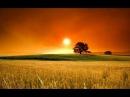 Горіла сосна палала 💗 Horila sosna | Ukrainian folk song | Інна Книжник