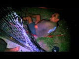 Coxy's Electric fence encounter ---SUBSCRIBE---