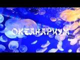 Океанариум, Япония. Икебукуро. 日本、池袋、水族館. Japan