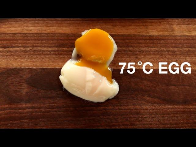 75 C Egg - Sous Vide Recipe - ChefSteps