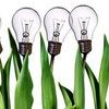 Бизнес-идеи | Начать свой бизнес с нуля