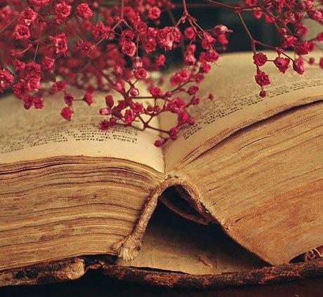 Почти все ответы на сегодняшние вопросы содержатся в старых книгах.