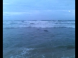 пришли на пляж, а генка уже там))))))))
