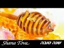 Rosh Hashanah Shana Tova / שנה טובה