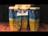 Marvin Diz Conga Cajon Series Baptista Percussion Instruments
