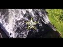 Starrlight x Persoonlijk (PSL) - More Than Music (Official Video)