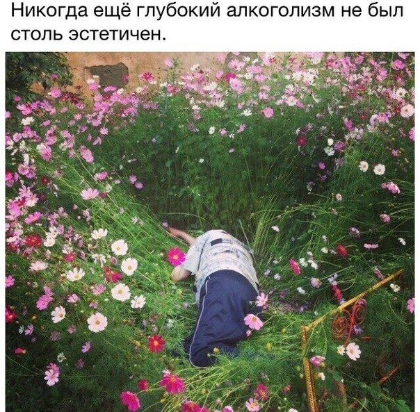 https://pp.vk.me/c623926/v623926348/38d0d/PIbSNisPTFA.jpg