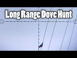 Extreme Long Range Dove Hunting
