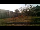Сожжённая техника ВСУ в пос.Новосветловка.Луганск