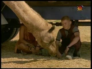 Грозовые камни / Thunderstone (1-й сезон, 6-я серия) (1999-2000) (фантастика, фэнтези, приключения, семейный)