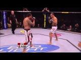 Fight Night Austin Free Fight: Dos Santos vs. Werdum