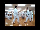 6th Seminar Class3 Kihon, Kumite Kouji Chubachi