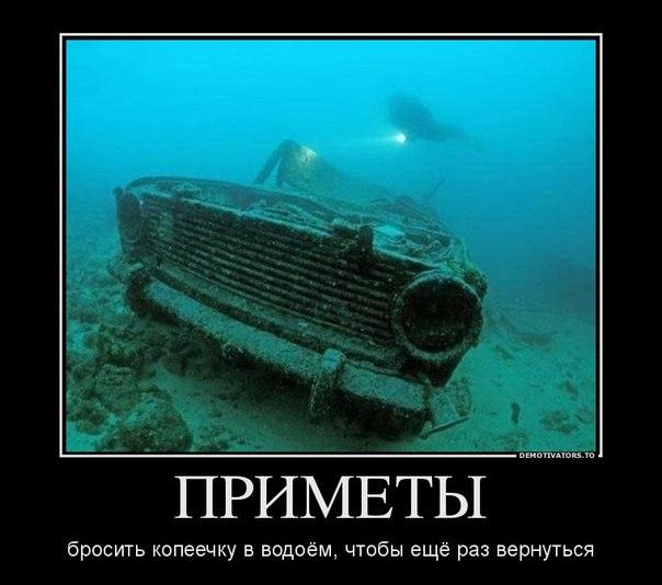 http://cs623929.vk.me/v623929464/19fc9/7j_P0783QpA.jpg