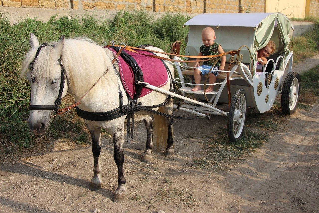 Изготовление телег для лошади своими руками 21
