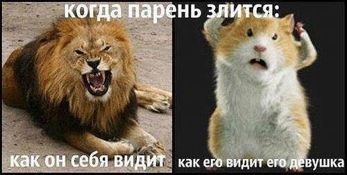 http://cs623929.vk.me/v623929719/24cb9/uV8HnnLqBQU.jpg