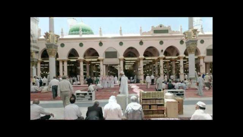 Сура 45. аль-Джасийа «Коленопреклонённые»