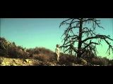 GOLD ZEBRA - Apart Again (Official Video)