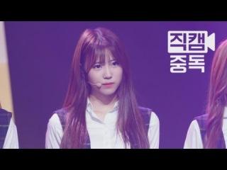 Mnet Fancam 러블리즈 미주 직캠 Ah-Choo 엠카운트다운_151001 150101 EP.34