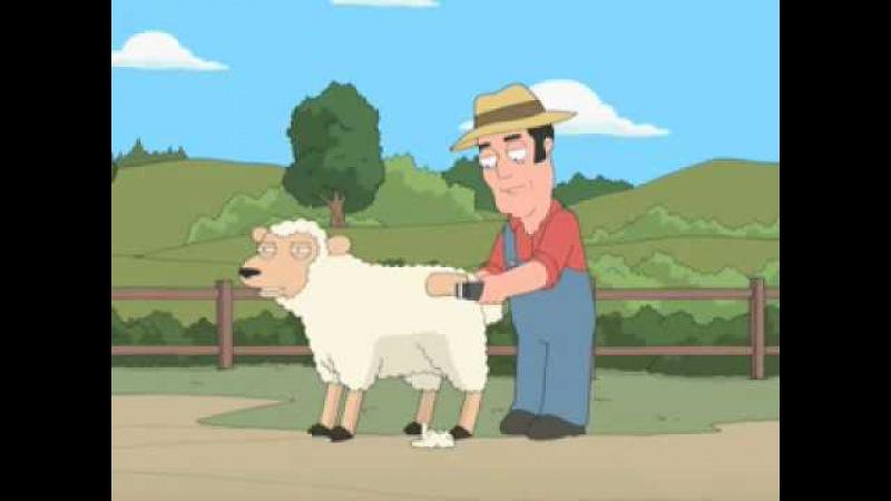 Гриффины Овца