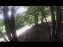 И в один момент просто дорога закончилась и пошли просто через лес!)) Карпаты, Рахов, 2015