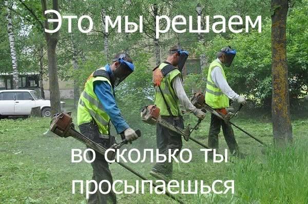 https://pp.vk.me/c623931/v623931395/4a164/X8yGA63ioSs.jpg