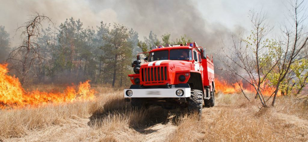 Экстренное предупреждение МЧС: c 12 по 14 августа сохранится чрезвычайная пожароопасность (5 класс)