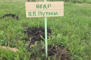 Фестиваль 2014, Белгород. Подарок из Сибири Белгородской земле. http://vk.com/album147567881_197550141