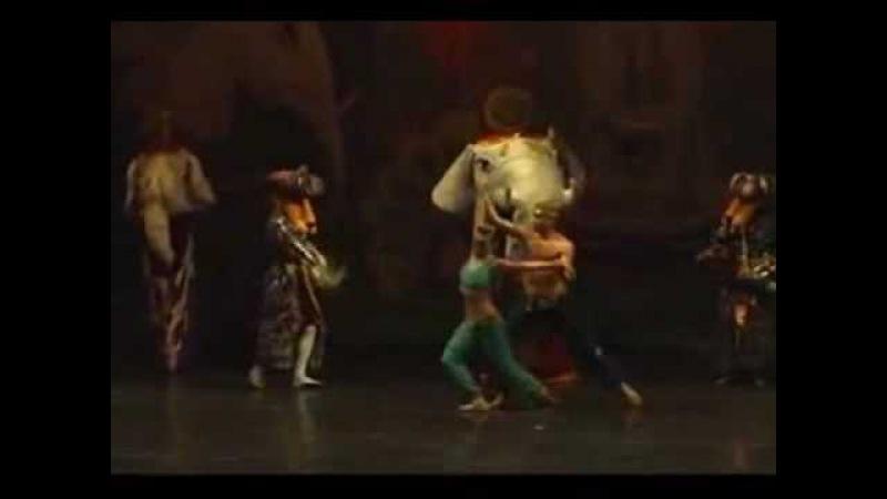 Звезда балета (лев на заднем плане). ОТЖИГ!