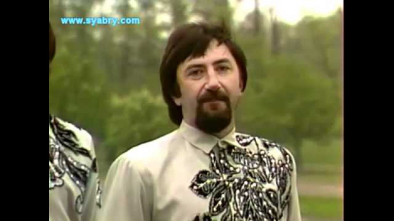 Два поля (Два полі) А. Ярмоленко и ВИА Сябры - Syabry 1984