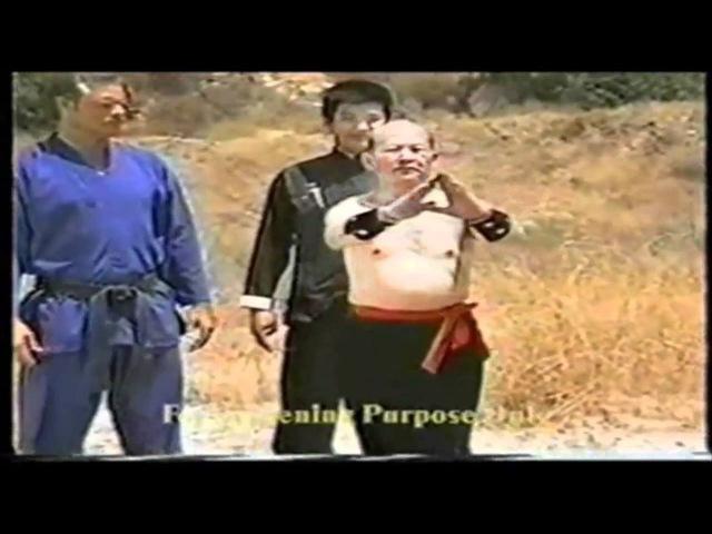 Master Zhou History