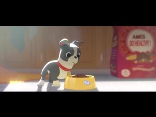 Короткометражный мультфильм от Дисней
