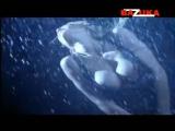 DVJ BAZUKA - Feelz [Episode 005] www.bazuka.tv