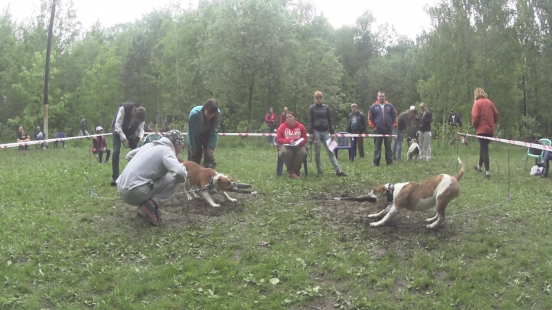 Шерри Бульдров и Алисия Гадн Энджелс
