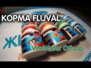 Обзор кормов для рыб FLUVAL