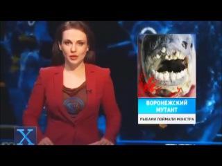 Рыбы мутанты в Воронежских водоёмах.