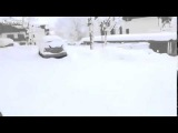 LiveLeak - Why Chihuahua shouldn't go out when snowing