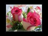 нежная песня поздравления с днем рождения и много роз!!