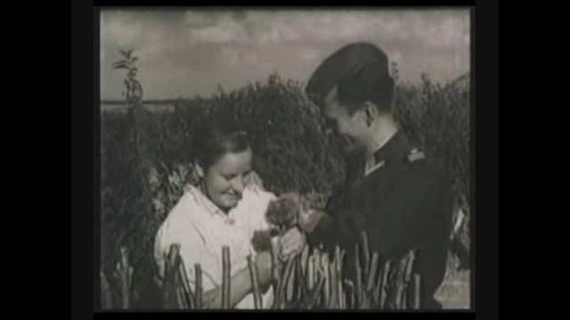 Социальная реклама на оккупированных территориях (1942)