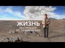 Фильм ЖИЗНЬ Инструкция по применению HD