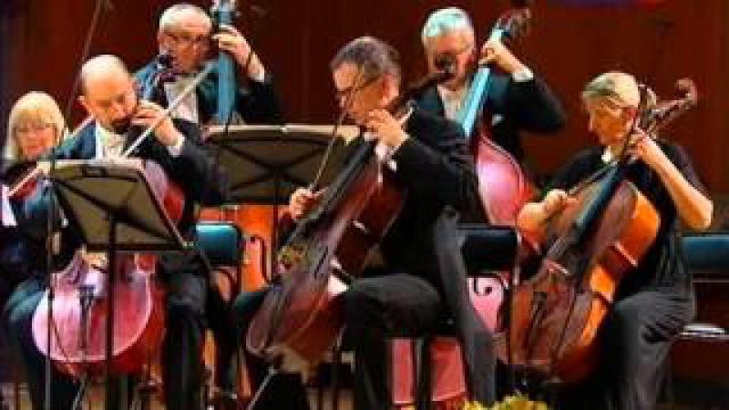 Венский оркестр Имре Кальмана. Гранд-Гала Wiener Kalman Orchester. Grand-Gala