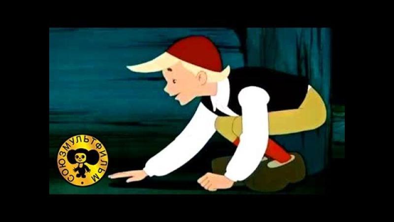 Сказки : Заколдованный мальчик (Нильс и гуси)