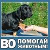 """ВО """"ПОМОГАЙ ЖИВОТНЫМ!"""" (Кемерово)"""