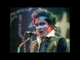 Adam and the Ants - Ants Invasion