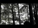 Agonoize - Bis das Blut gefriert (2009)