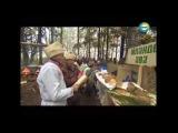 Марийцы Жить в гармонии с природой