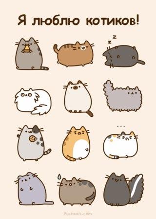 Коты для личного дневника
