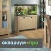 АКВАРИУМ-ПРО - обслуживание аквариумов