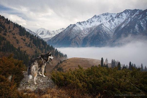Фото дня. Осень в горах.