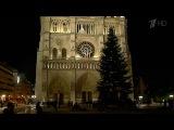 В Париже вечером зажгутся огни на главной елке страны - Первый канал